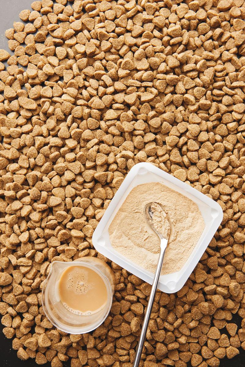 מזון חיות מחמד יבש שהפך לפופולרי בשנות ה-40 הוא מזין חסר טעם. מדעני מזון מצפים אותו במשפרי טעם נוזליים או אבקתיים כדי לפתות חתולים וכלבים לאכול אותם (תמונה: מדע פופולארי)