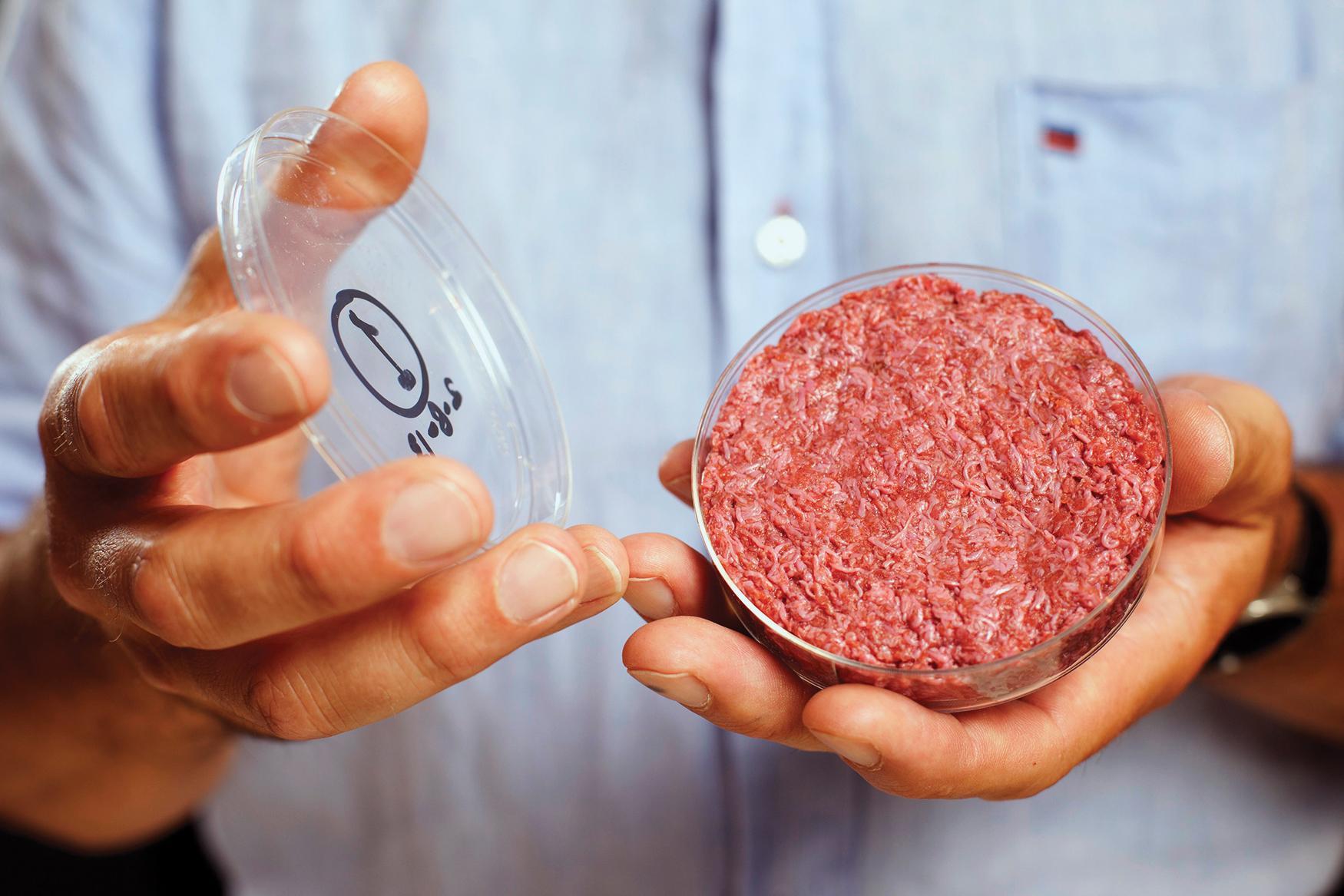 באוגוסט האחרון הגיש מארק פוסט מאוניברסיטת מאסטריכט בהולנד המבורגר שגודל במעבדה לשני סועדים. אחד אמר ש״הוא לא היה לא נעים״. צילום: בריאן קלאץ׳, מדע פופולארי.
