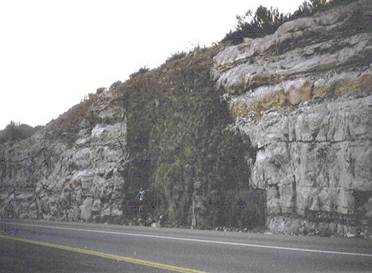 אבן מסוג Diabase, צולמה באריזונה. קרדיט תמונה: Public Domain