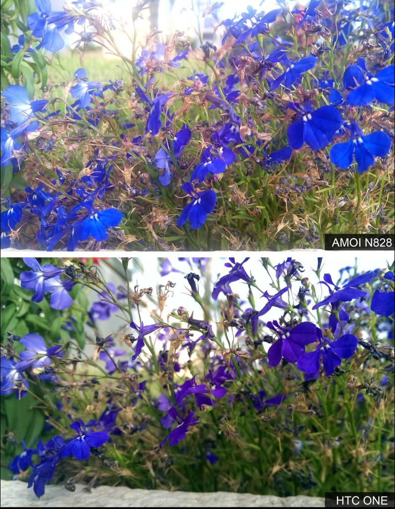 השוואה בין צילום חוץ - HTC ONE מול AMOI N828