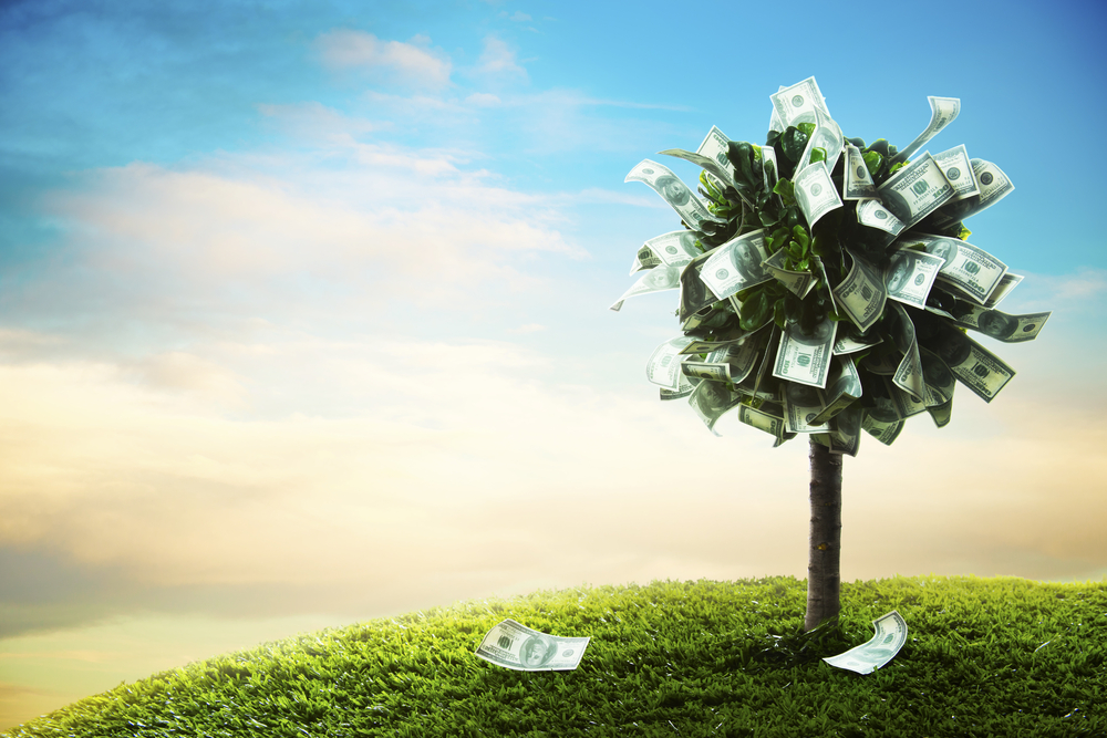 shutterstock money tree