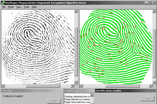 מקור: צילום מסך, Neurotechnology Verifinger