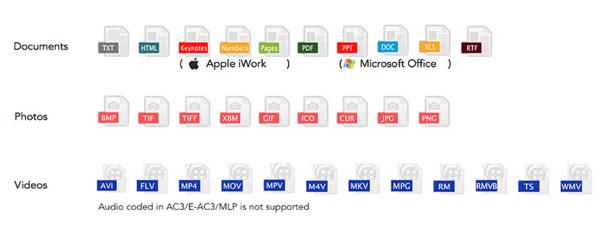 סוג הקבצים בהם תומכת האפליקציה. מקור: photofast.com