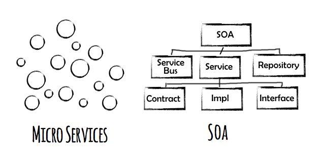 MSA vs SOA