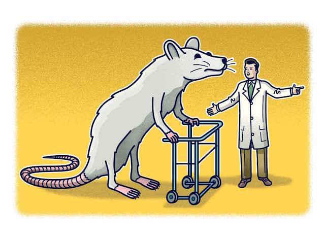 rat-exerciser