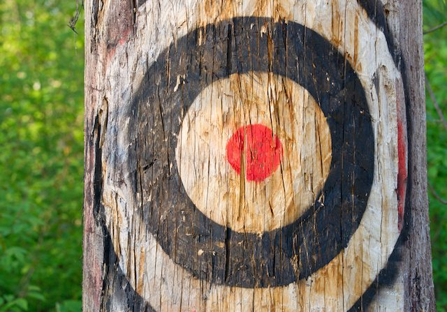 shutterstock target