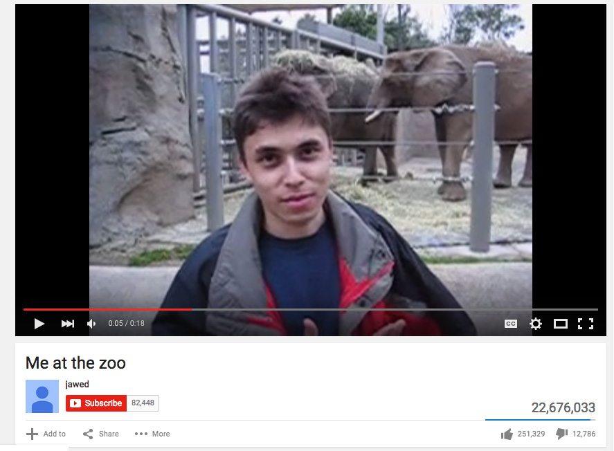 """הסרטון הראשון שהועלה אי פעם ליוטיוב. מקור: יח""""צ"""