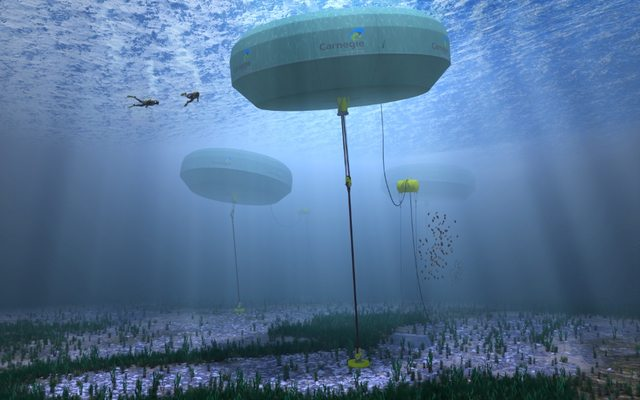 מקור: Carnegie Wave Energy