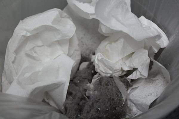 זה סופו של כל אבק. צילום: גיקטיים