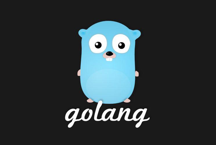 לוגו שפת Go. קרדיט: אתר GoLang.org