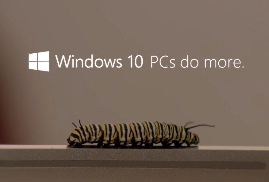 מקור: צילום מתוך וידאו