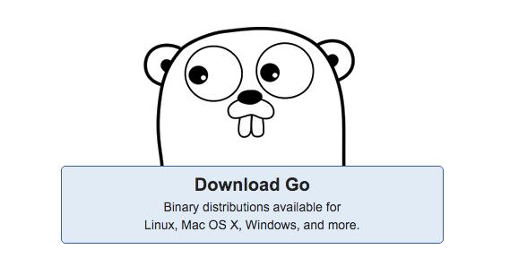 צילום מסך: האתר של Go