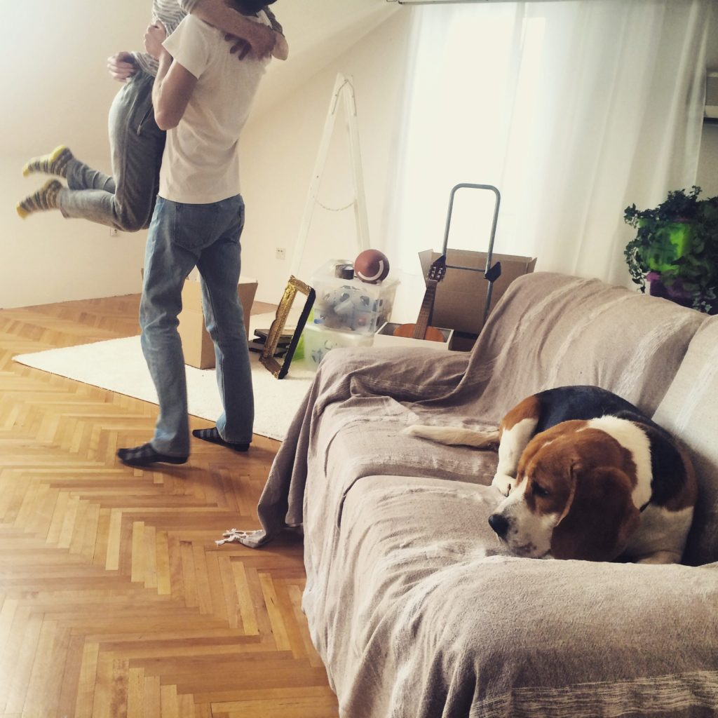 Happy couple moving in their new home along with their dog // mobile stock photo, photographed with iPhone 5