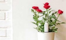 Flower care sensor
